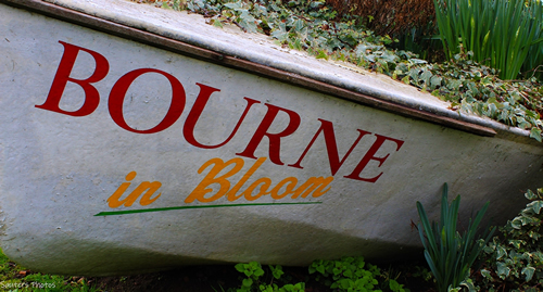 Bourne in Bloom